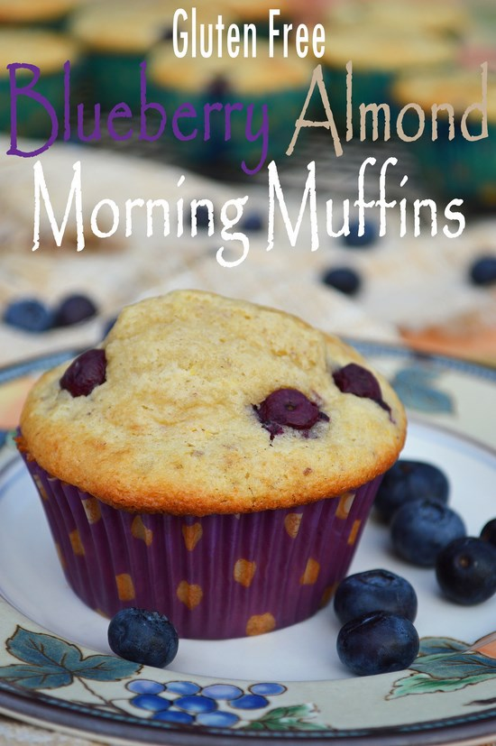 Gluten free blueberry almond muffins sweetened with a mixture of brown ...